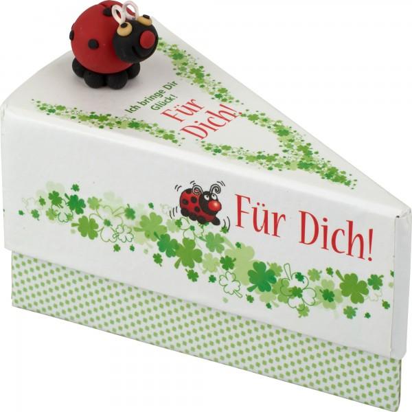 Geschenkschachtel Käfer/Für Dich