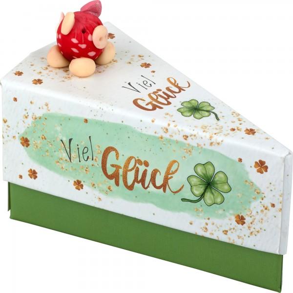 Geschenkschachtel Swiggie/Viel Glück